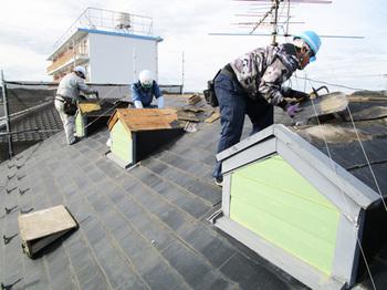 当社は千葉中央区にある外装リフォーム専門店みすずです。         このサイトは外壁・屋根・ベランダなどのお手入れに特化した外装リフォーム専門サイトです。施工事例掲載実績千葉県No.1 外壁塗装・屋根塗装は千葉の外装リフォーム専門店みすずへお任せください